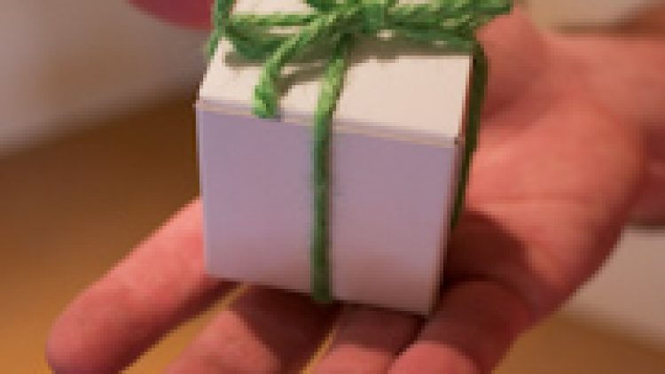 Eco Gift Boxes, 2004